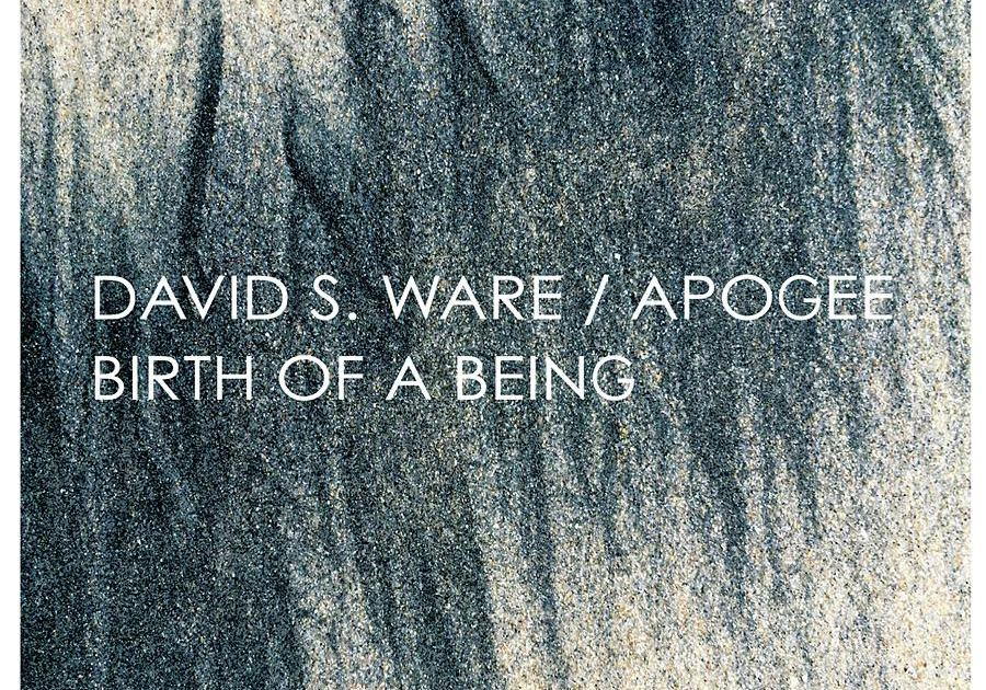Review : David S. Ware – Birth Of A Being (1977/2015)