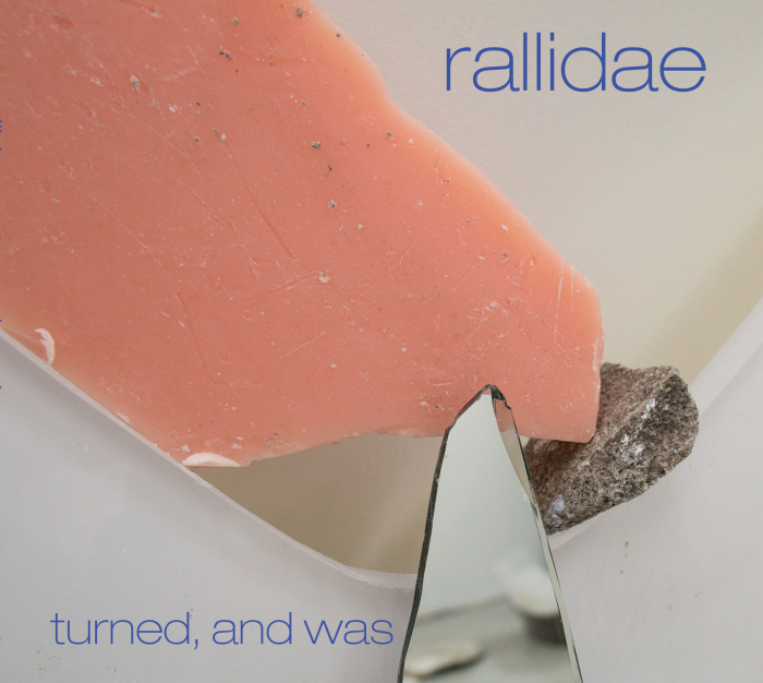 Review: Angela Morris' Rallidae – Turned, and Was