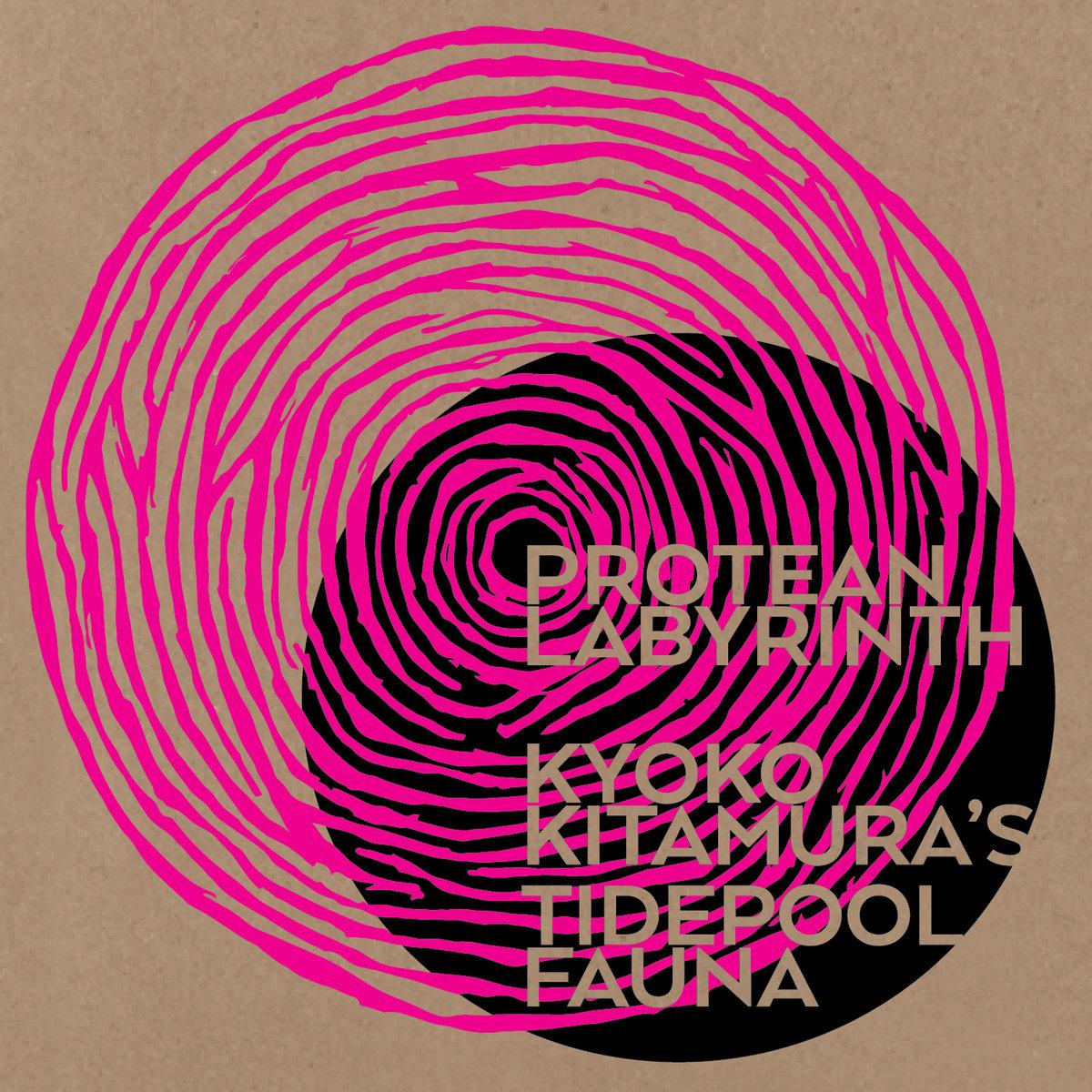 Review: Kyoko Kitamura's Tidepool Fauna – Protean Labyrinth