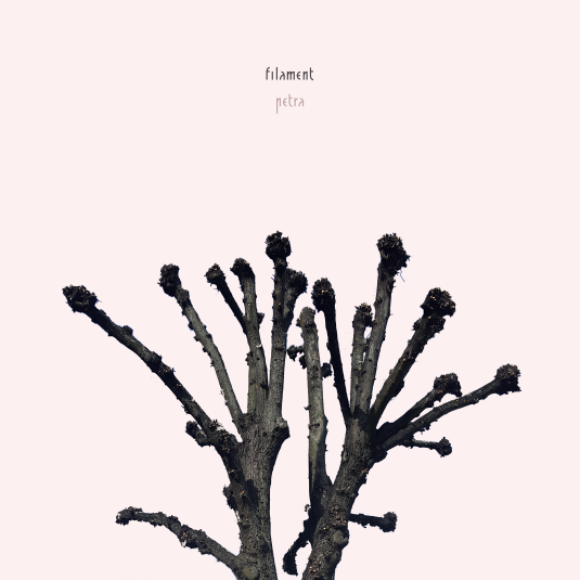 Review: petra – filament